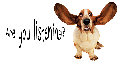 Critic Dog-Are-You-Listening1