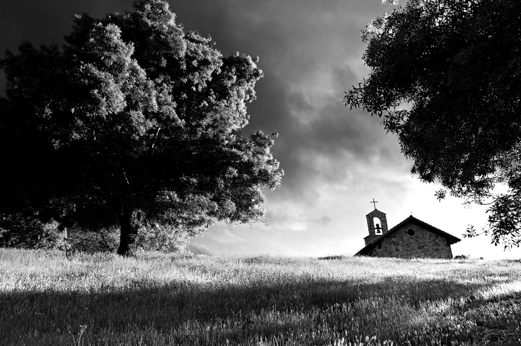 Chapel next to big tree on top of a grass hill - B&W